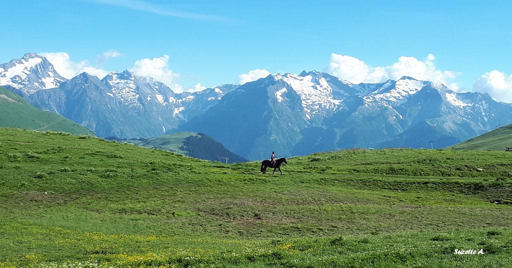 Montagne été (Suzette A.)