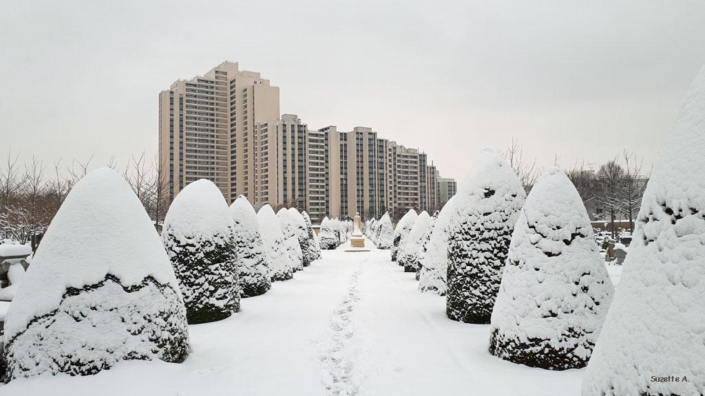 cimetière enneigé