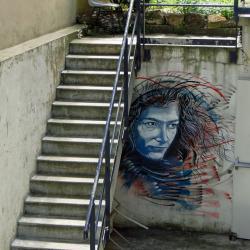Florence Arthaud