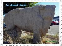 Le boeuf Rock