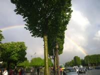 Les-Champs-Elysées5-MJ0426H1920