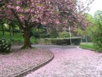 passant par le parc Henri-Barbusse