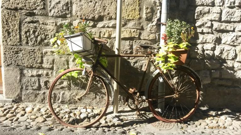 Vélo-jardinière