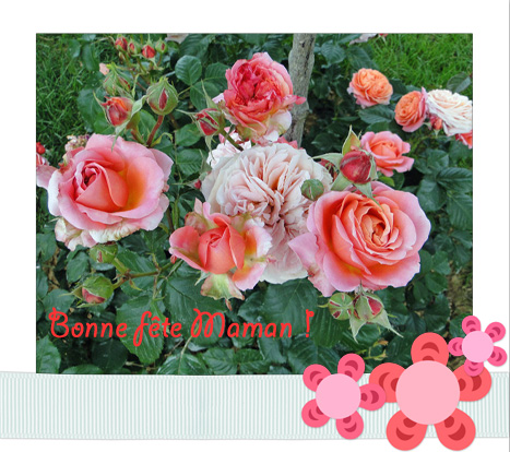 bouquet-FM2