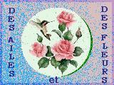 Des ailes et des fleurs