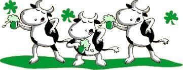 Vaches au vert
