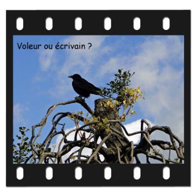 Maitre corbeau voleur ou écrivain ?