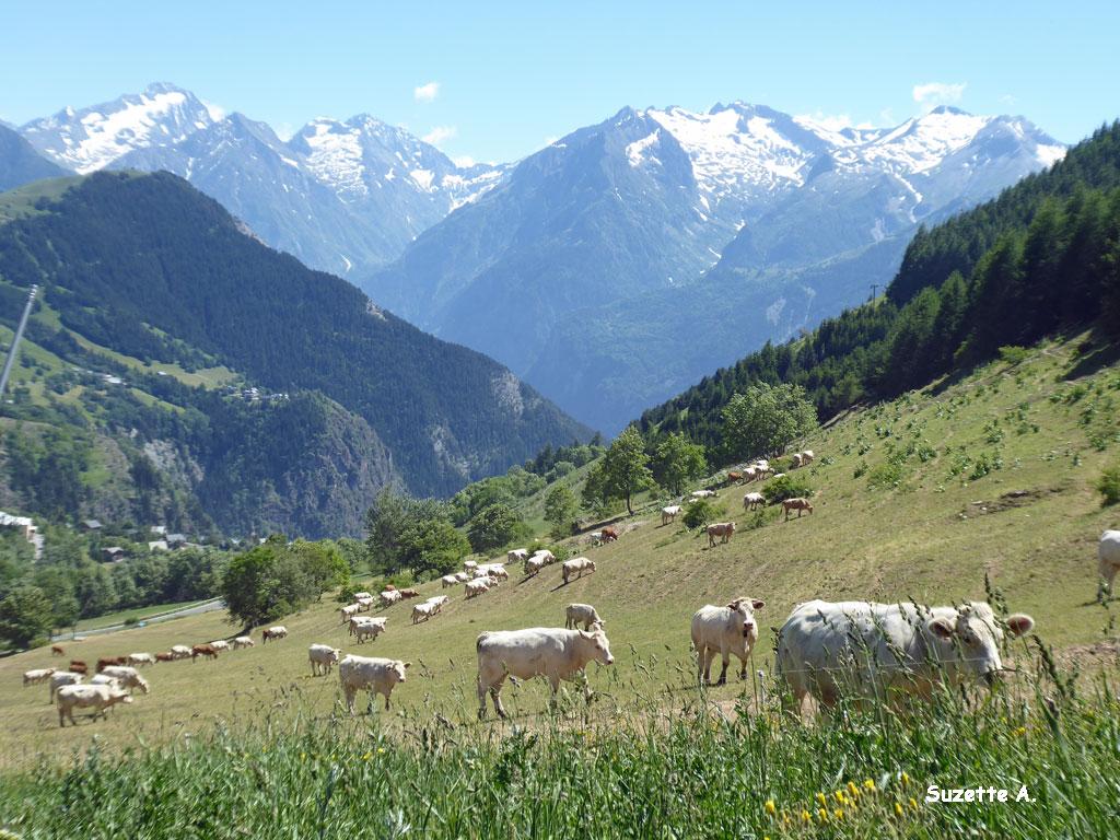 Alpes18b
