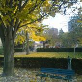automne parc de Choisy2