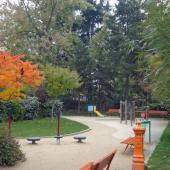 bancs d'automne
