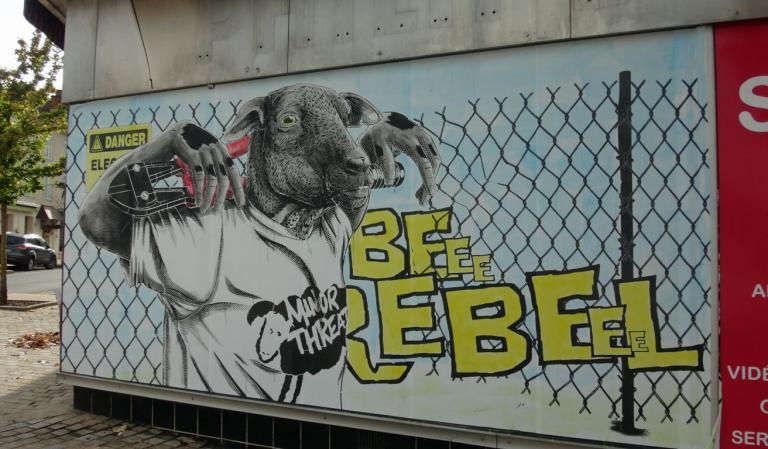 agneau-B06634