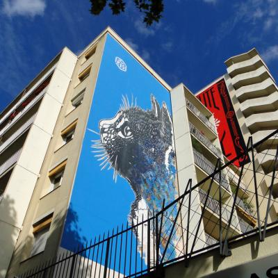 C215 Chat Nationale 01072016ph3