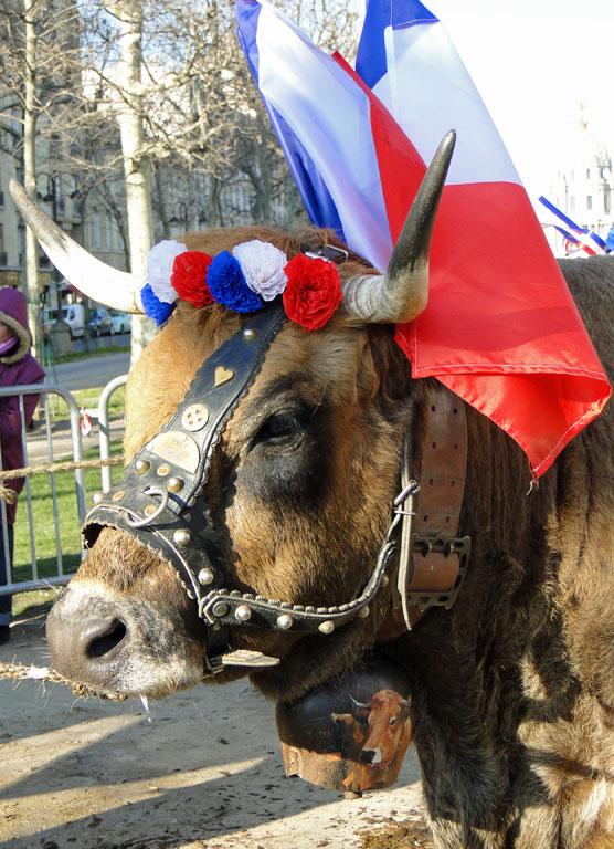 Reines de l'agriculture française