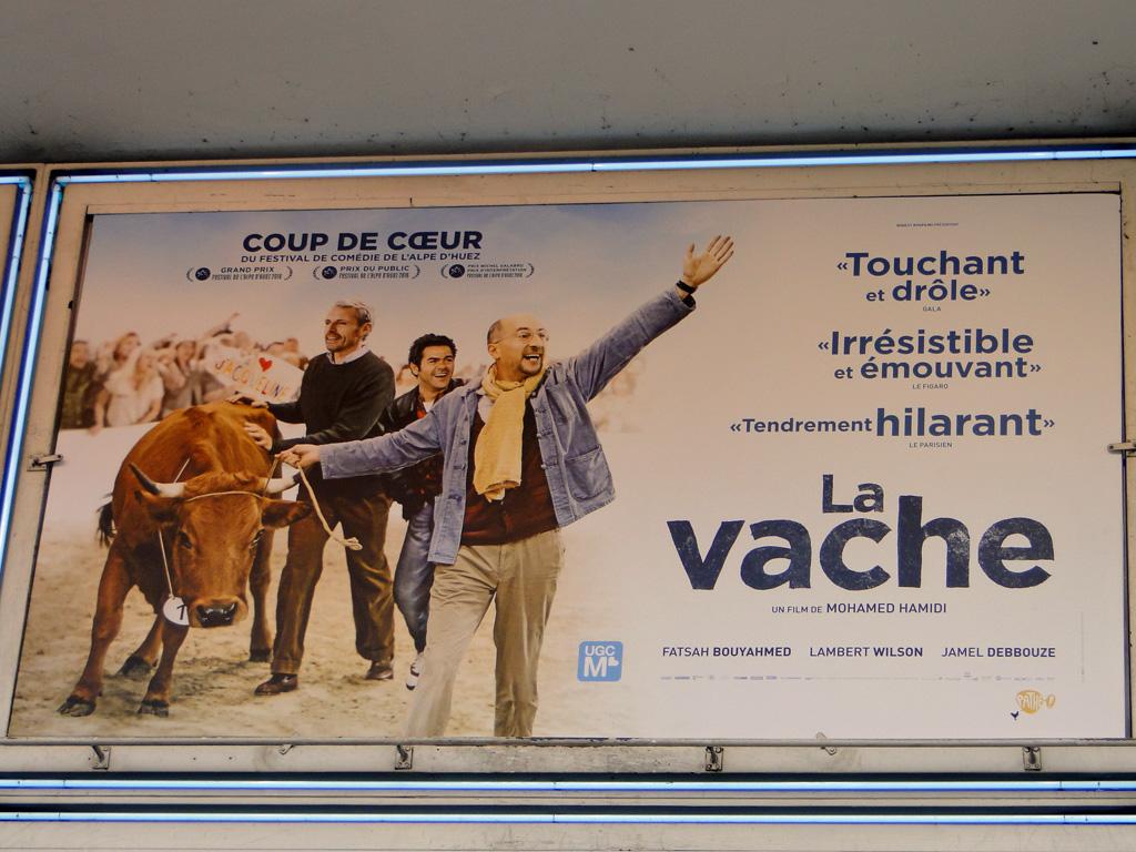 vache et cinéma