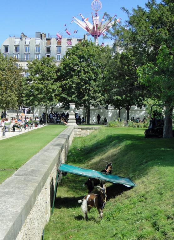 Tuileries6