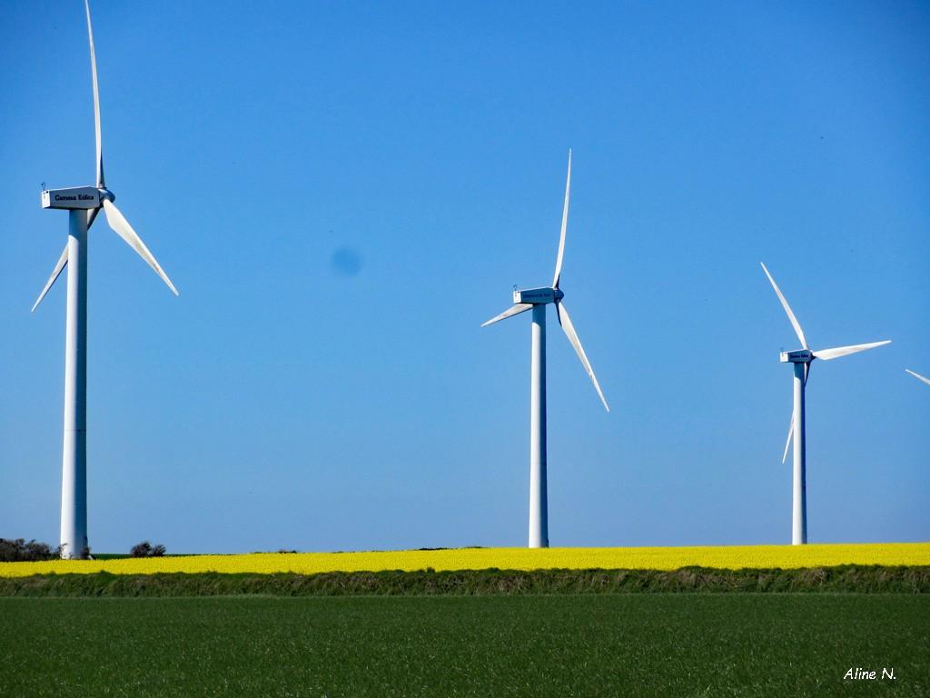 202107g6-paysage avec éolienne(s)-éol1