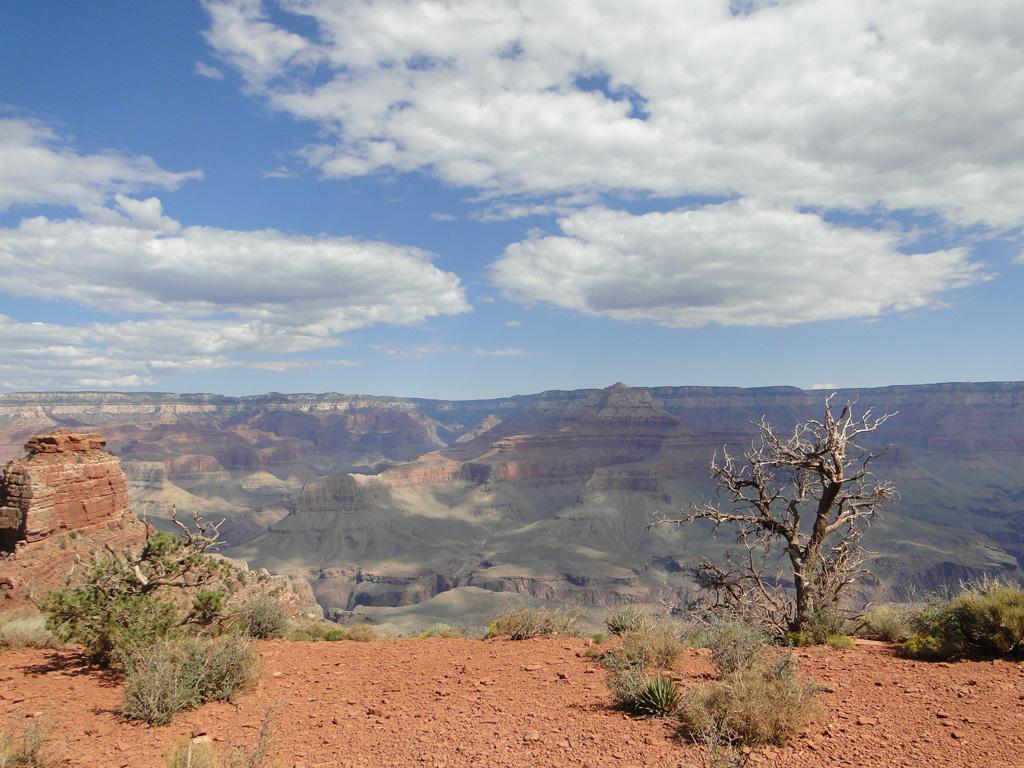 Grand-canyon-17