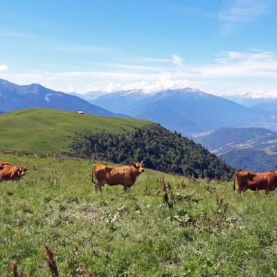 Savoie202107105051