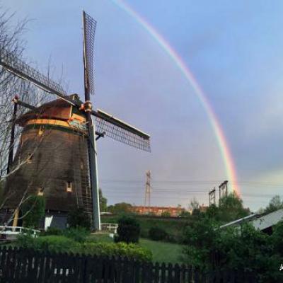 MD-La Haye