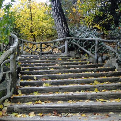 Montsouris-automne
