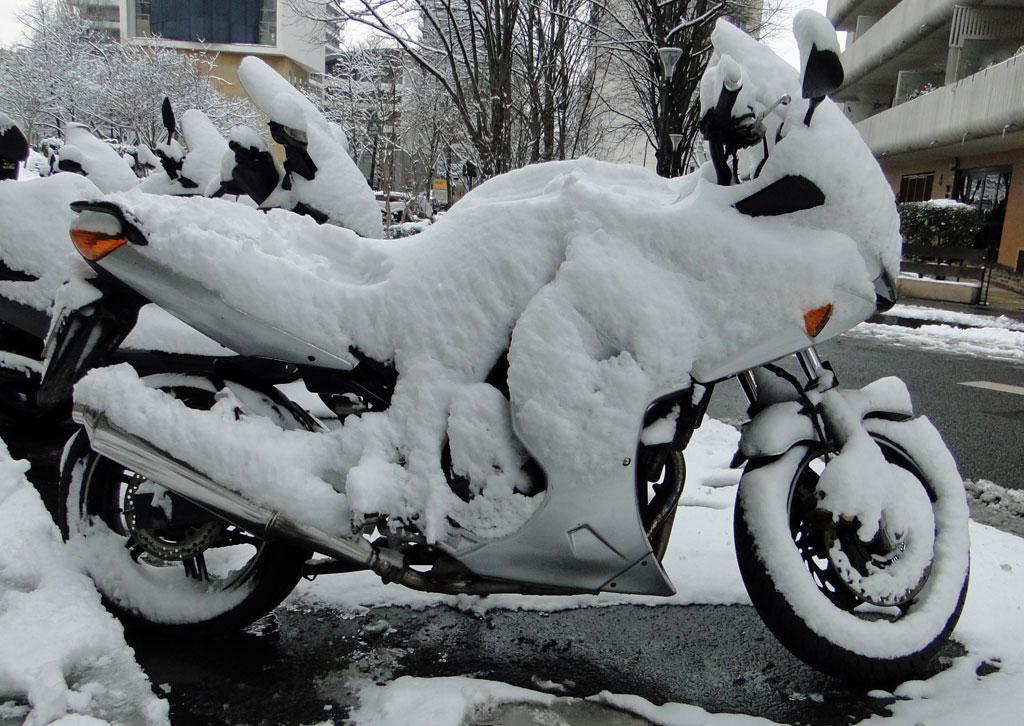 Moto(s)