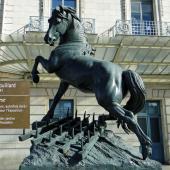 Le cheval à la Herse