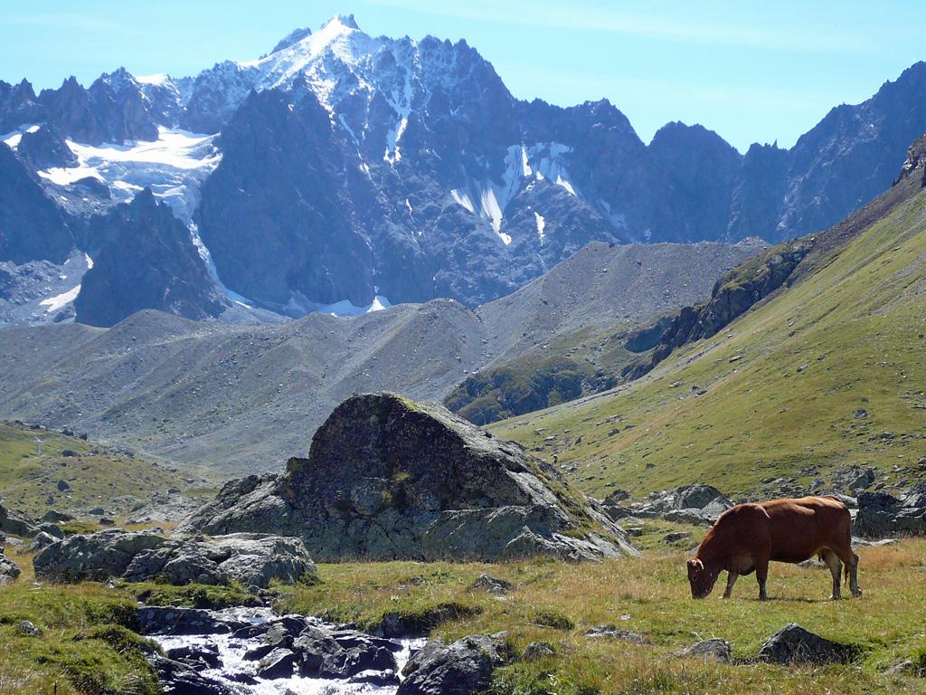 Montagne2015 1