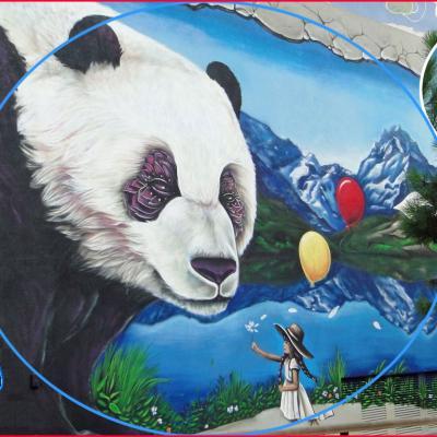 pandacompo