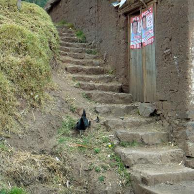 Pérou2