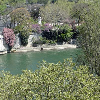 printemps-sur-Seine