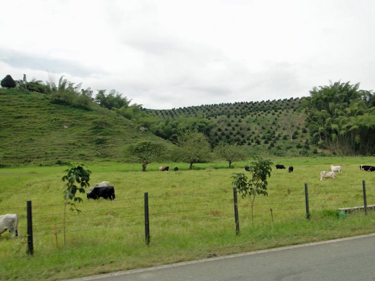 route-colombienne2