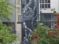 Squelette3