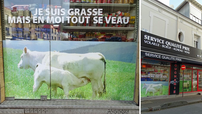 Vive les vaches !