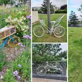 Vélo-Dieppe2