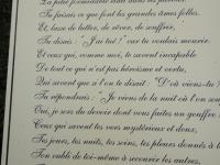l'Hommage de Victor Hugo (1ère partie)