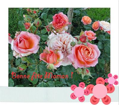 Bouquet fm2