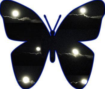 Papilune